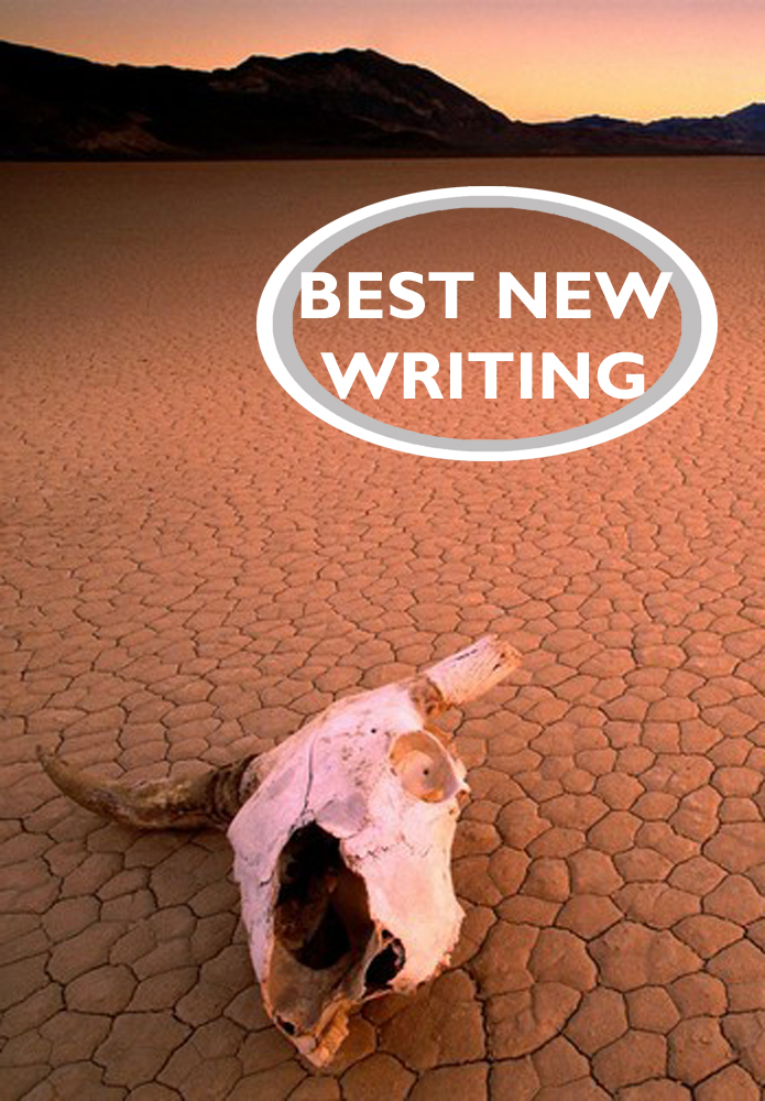 Best New Writing 2017